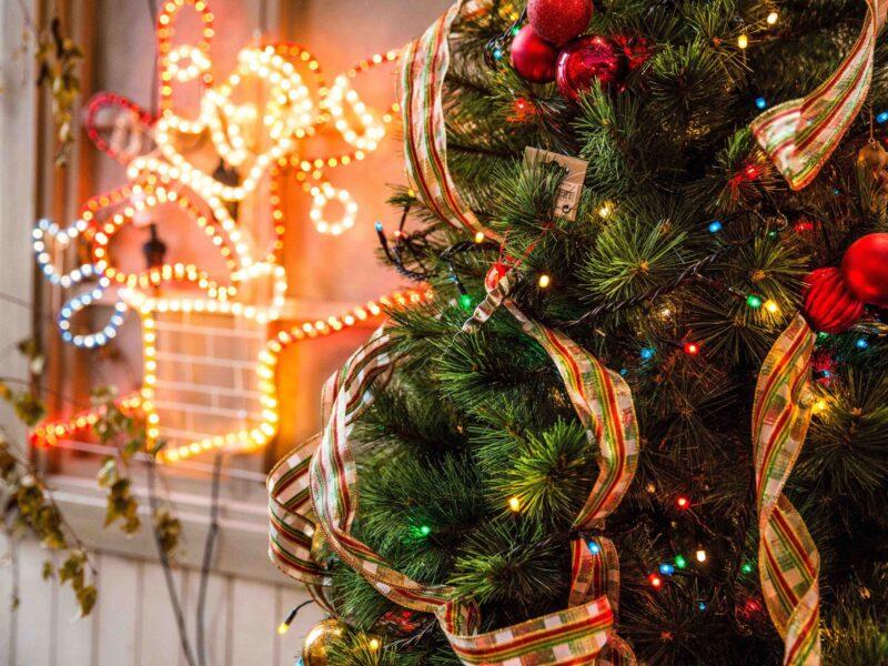 green-christmas-tree-688573