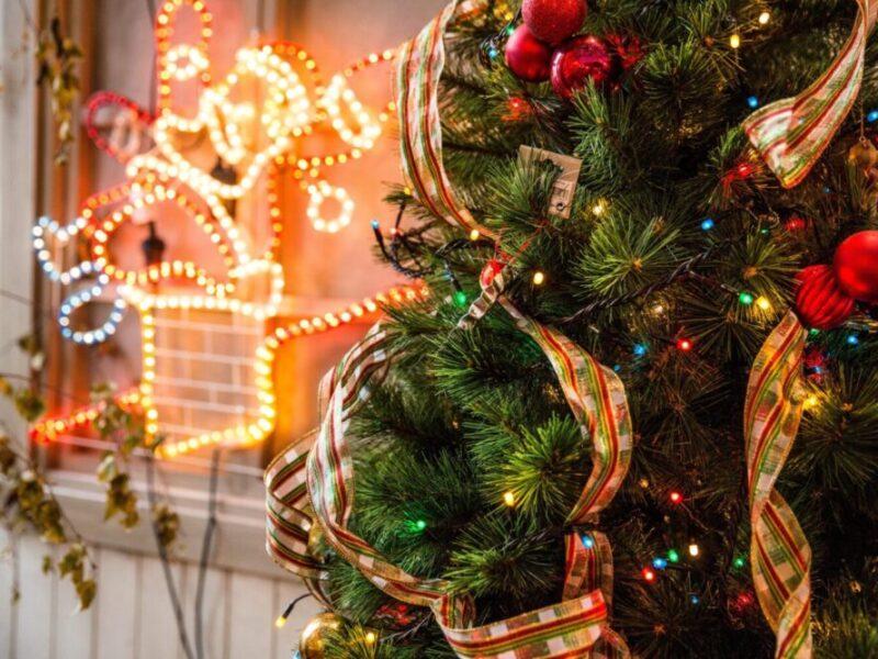 https://doohmedia.ch/wp-content/uploads/2019/12/green-christmas-tree-688573-scaled-e1576492519189.jpg